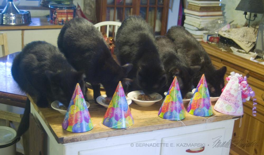 Happy 9th Birthday!