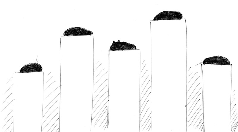 sketch of five black cats on pedestals