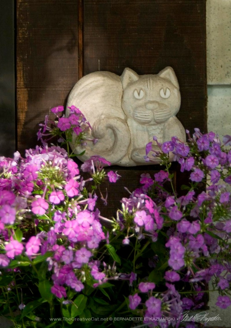 kitty plaque with phlox