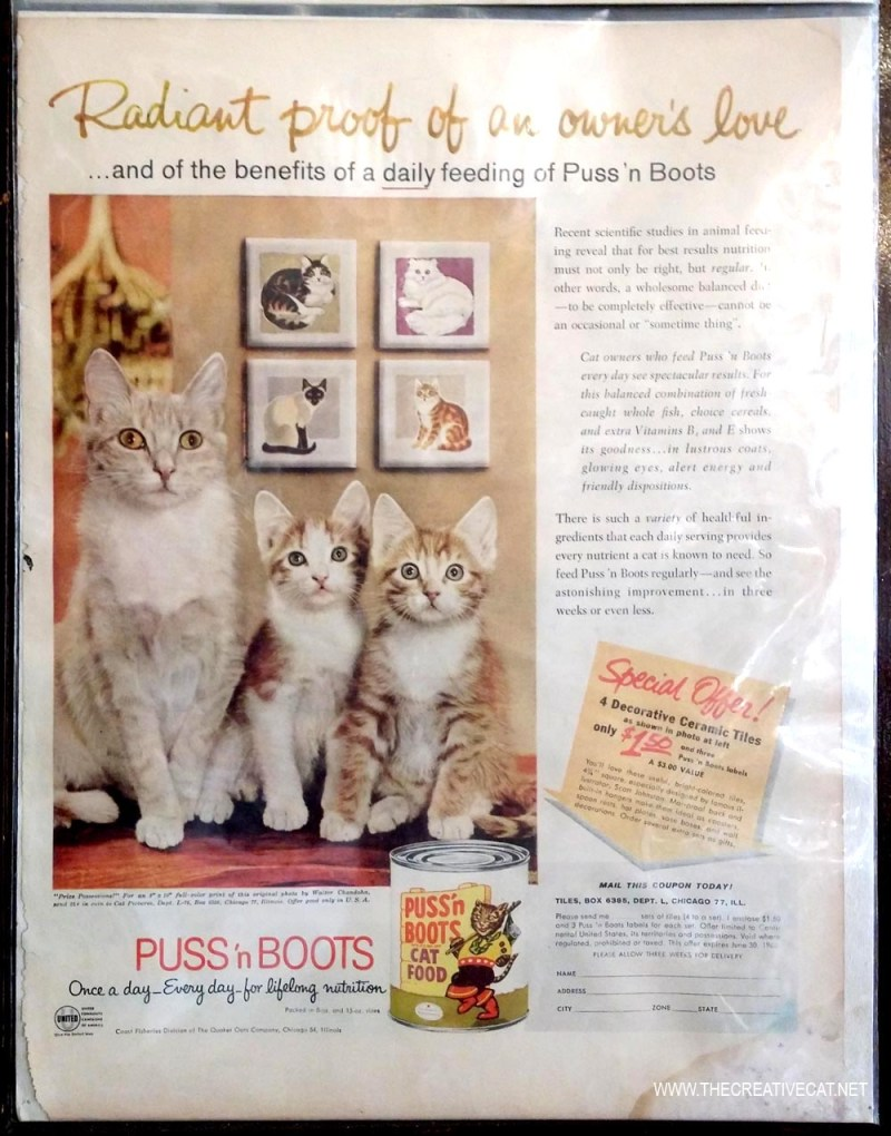 photo by Walter Chandoha from puss n boots ad