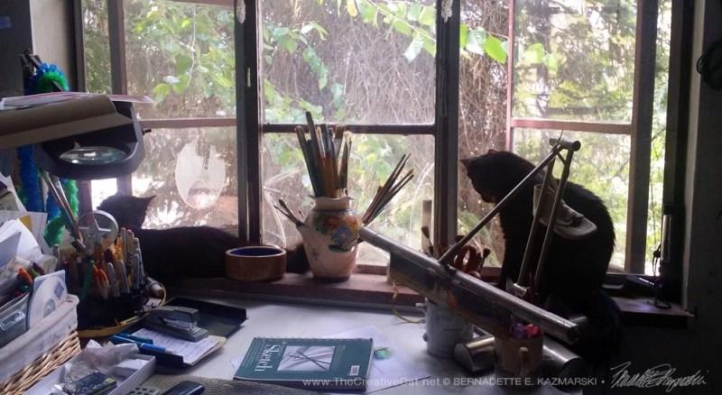 Enjoying the studio windowsill.