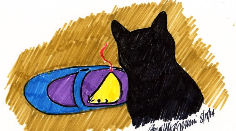 brush marker sketch of black cat with shoe and mousie toy