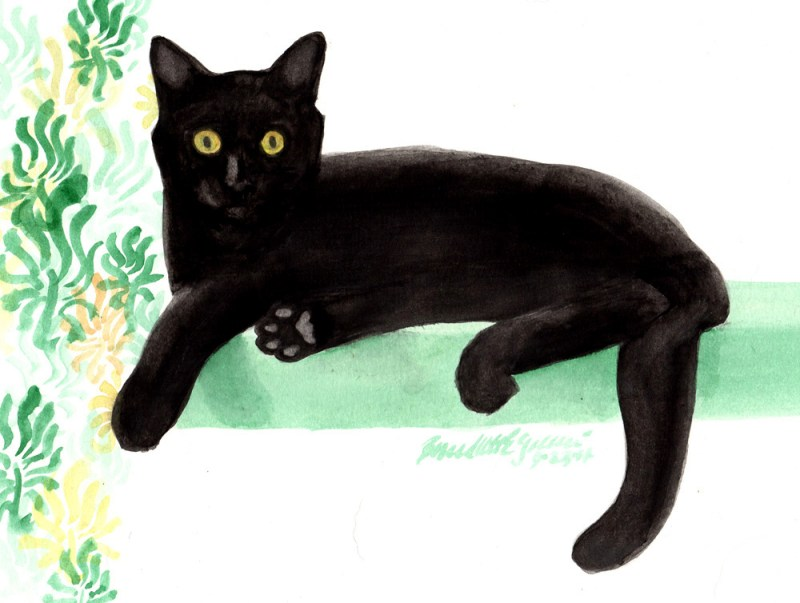 painting of black cat