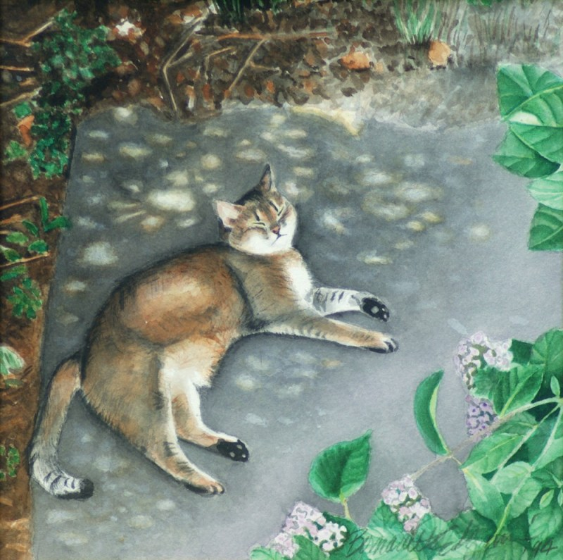 waterecolor portrait of abyssinian cat