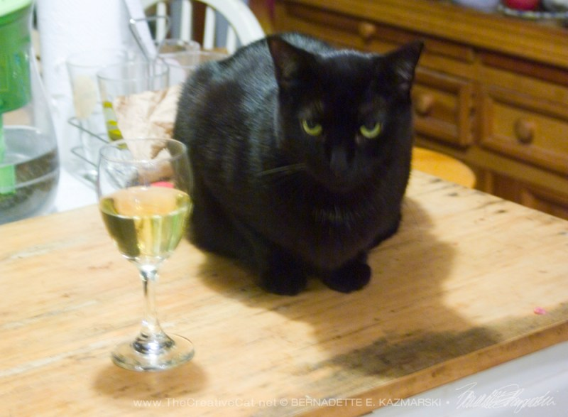 black cat with glass of wine