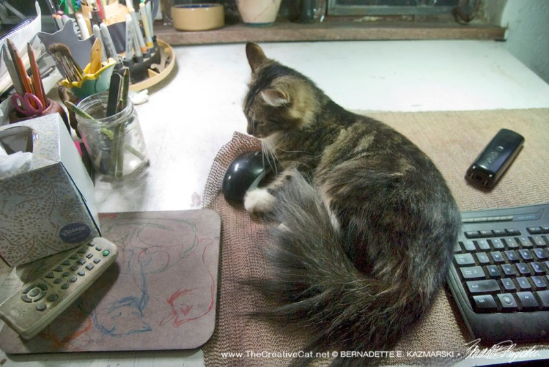 cat playing with computer mouse