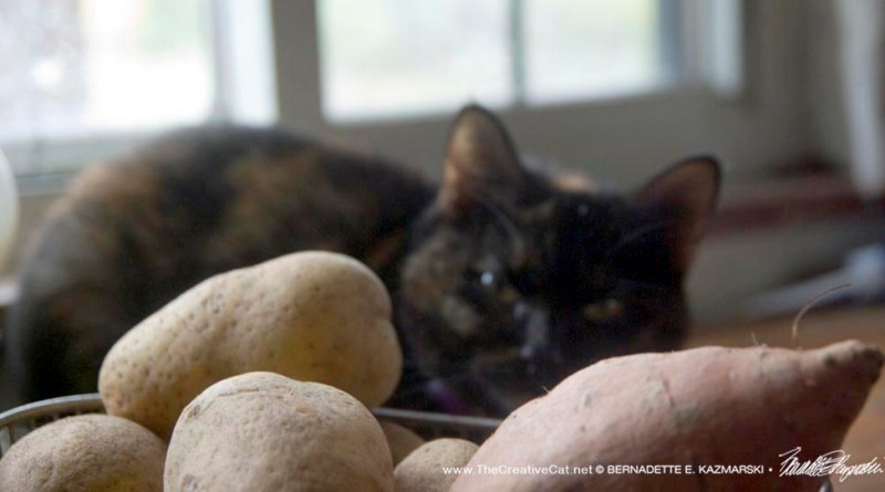 Sienna of the potatoes.