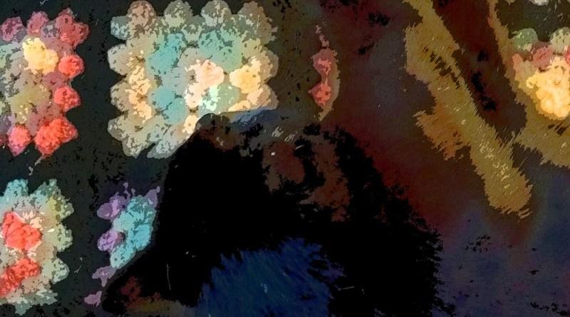 black cat on granny afghan
