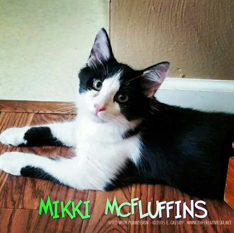 Mikki, such a love.