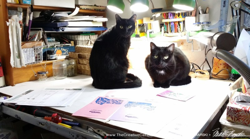 Can't you see it? two black cats