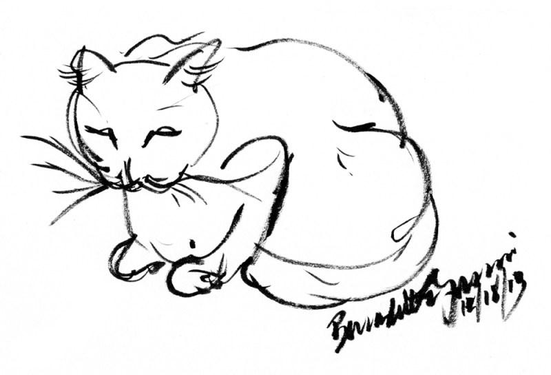brush drawing of cat