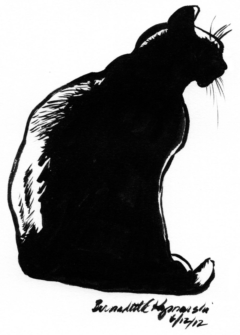ink silhouette sketch of black cat