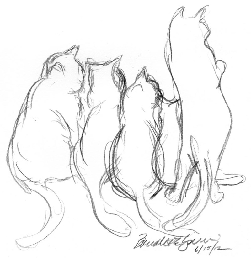 pencil sketch of five cats