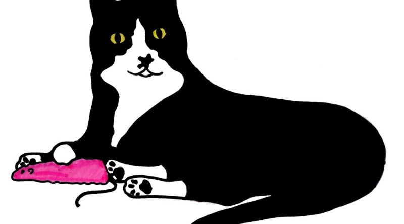 marker sketch of black and white cat with pink mouse