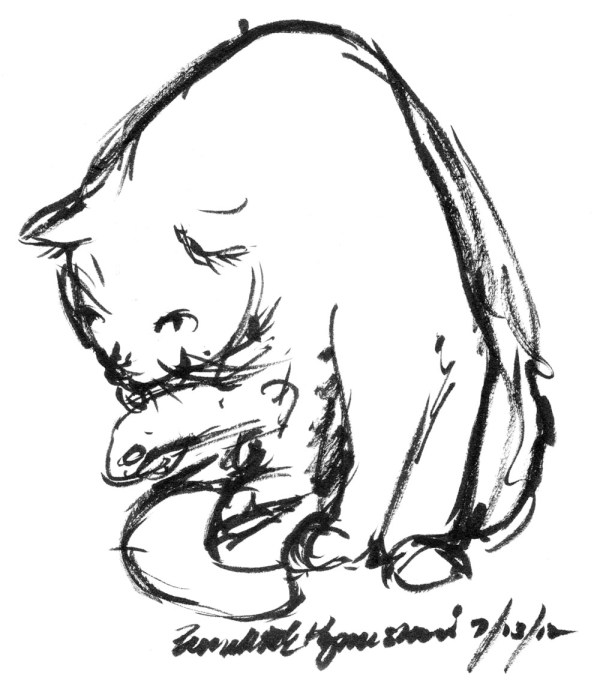 ink brush sketch of cat