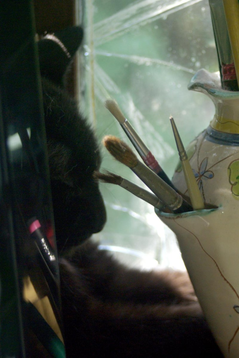 black cat profile with paintbrushes