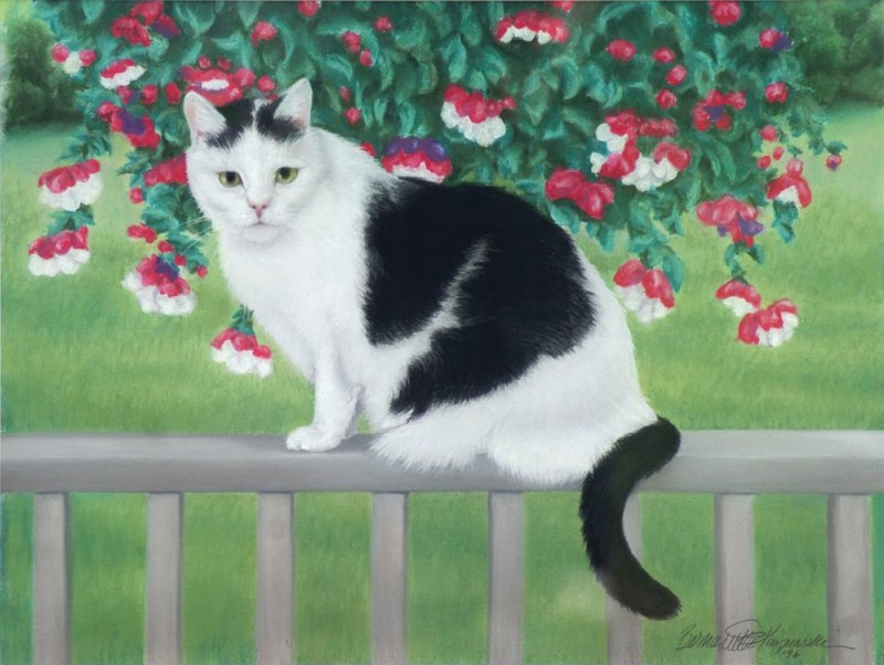 pastel portraits of black and white cat on deck railing with fuchsia