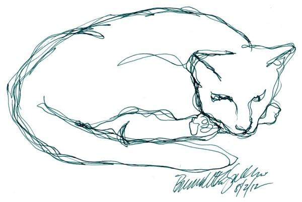 line sketch of cat