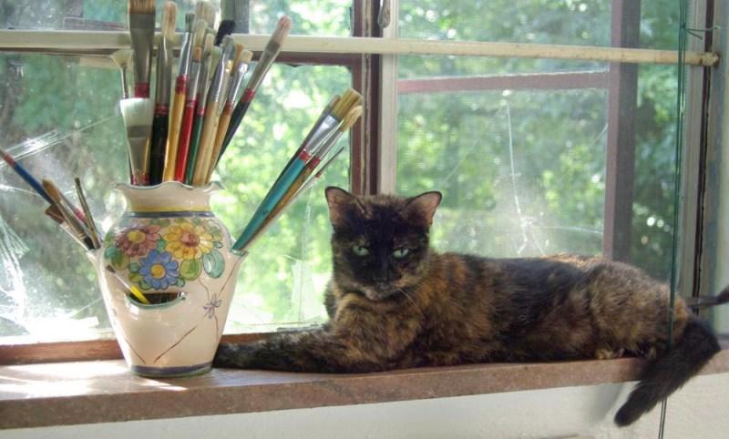 tortoiseshell cat on windowsill with paintbrushes