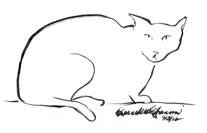 minimal sketch of black cat
