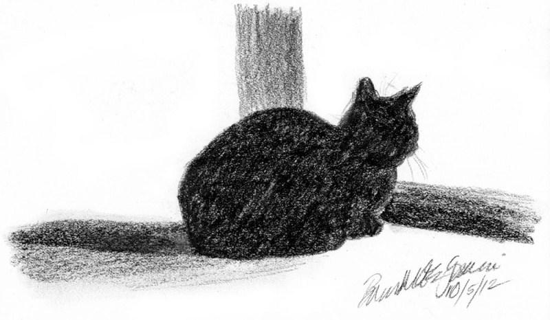 charcoal sketch of black cat