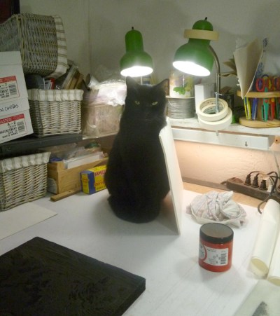 black cat with board leaning