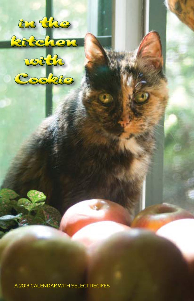 photo of cat with apples