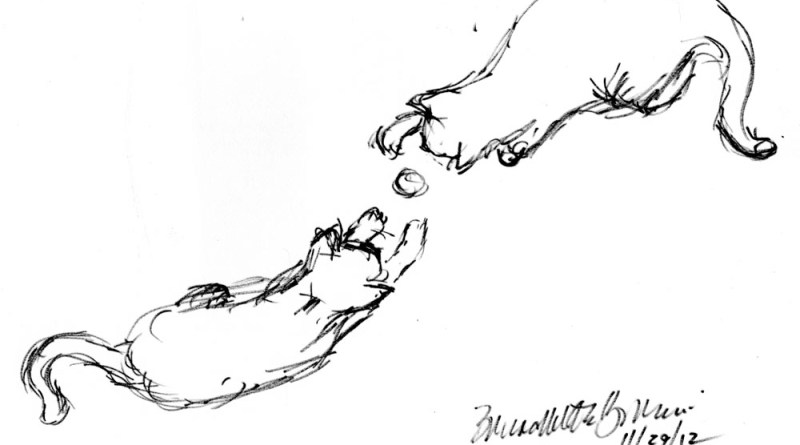 sketch of two cats playing hockey
