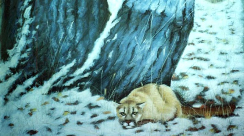 pastel painting of cougar