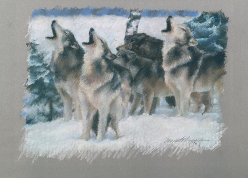 pastel painting of wolves