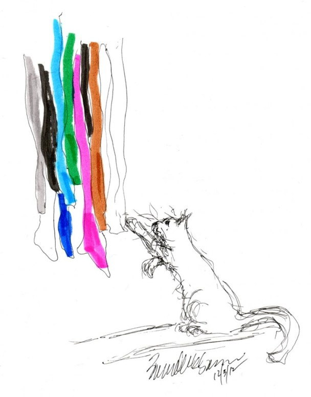 sketch of cat swatting at colored hosiery