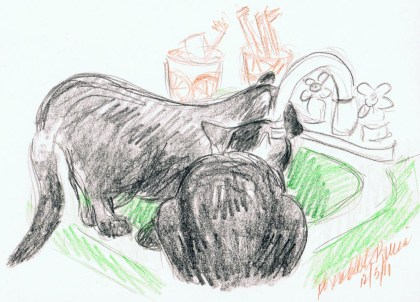 colored pencil drawing of two black cats drinking at sink