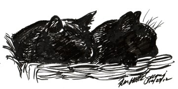 marker sketch of two black cats