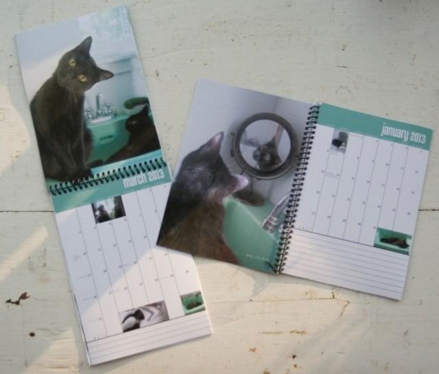 images of black cats calendar
