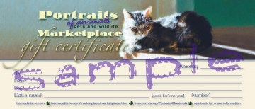 merchandise gift certificate
