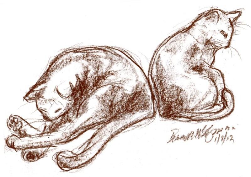 conté sketch of two cats