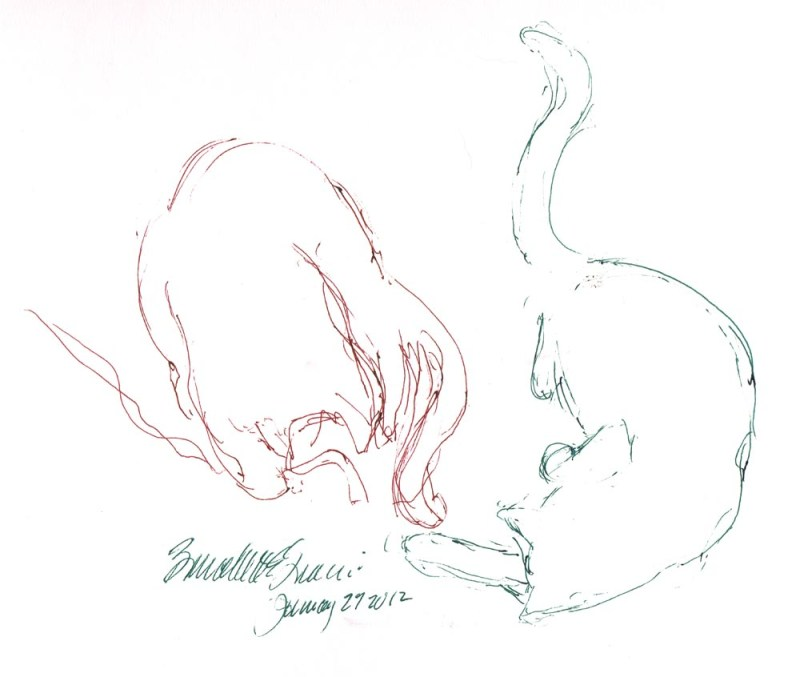 pen sketch of two cats playing