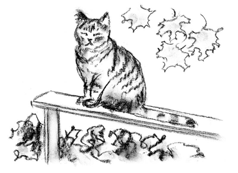 sketch of cat on railing