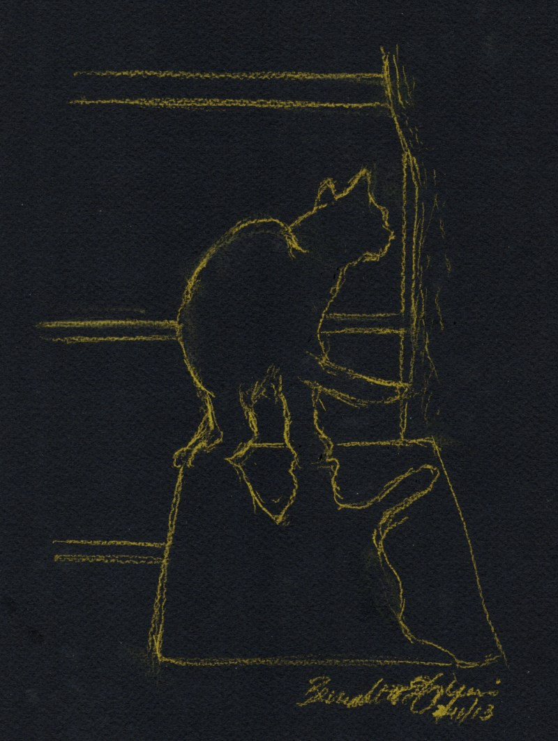 sketch of cat on black paper