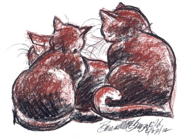 conté and charcoal sketch of cats