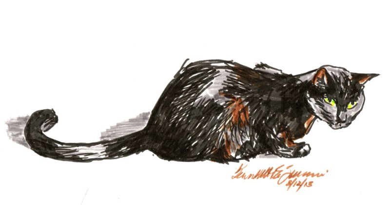 Marker sketch of a cat crouching