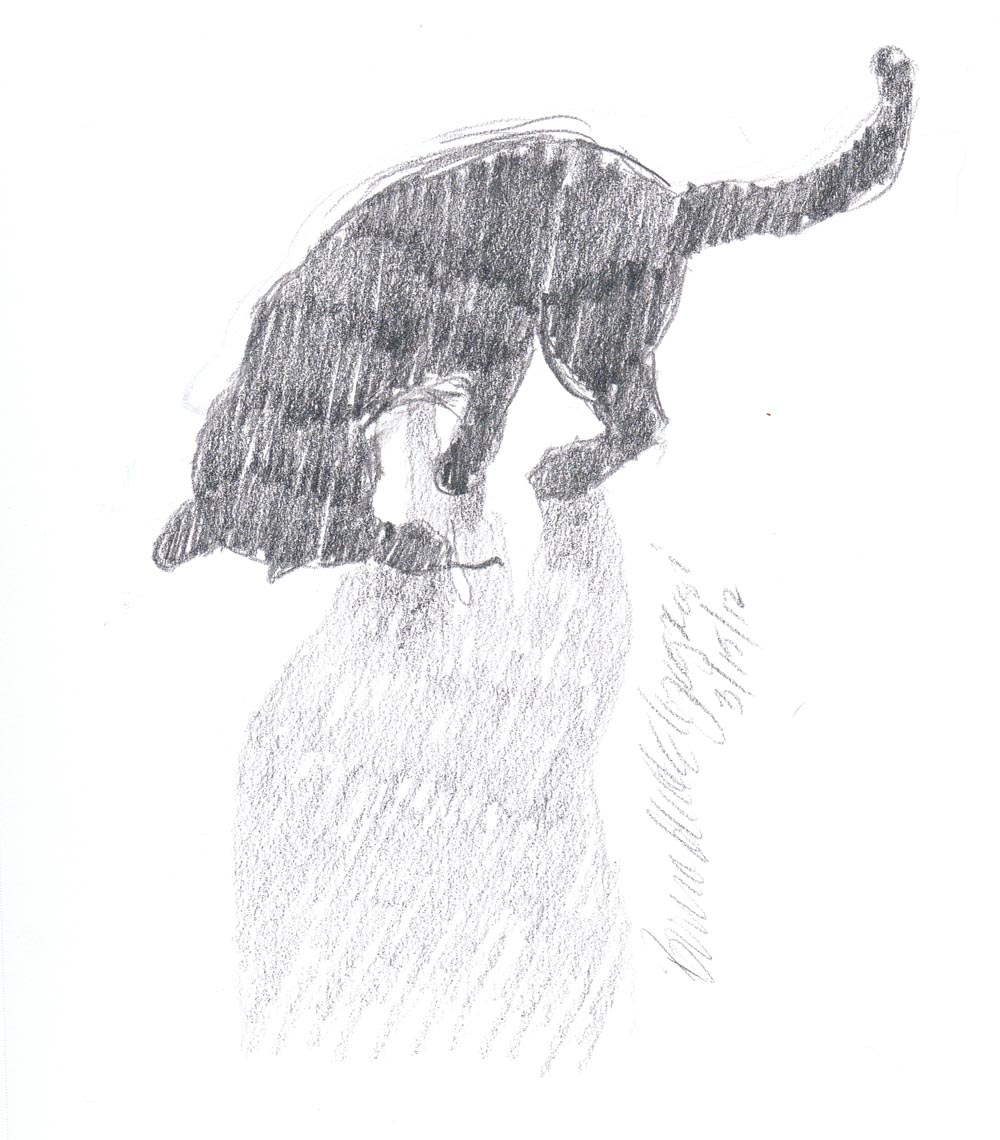 Daily Sketch Reprise: Kelly Silhouette, 2012