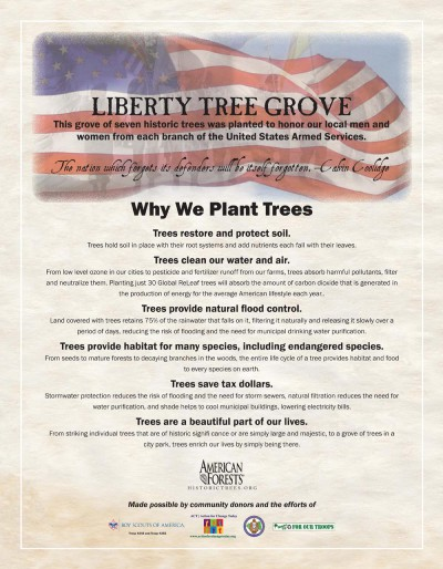 About planting trees for the Liberty Tree Grove.