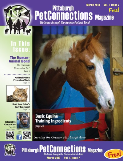 cover of pittsburgh petconnections magazine