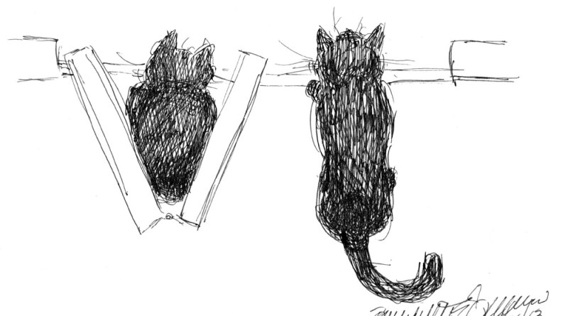 cartoon of two black cats