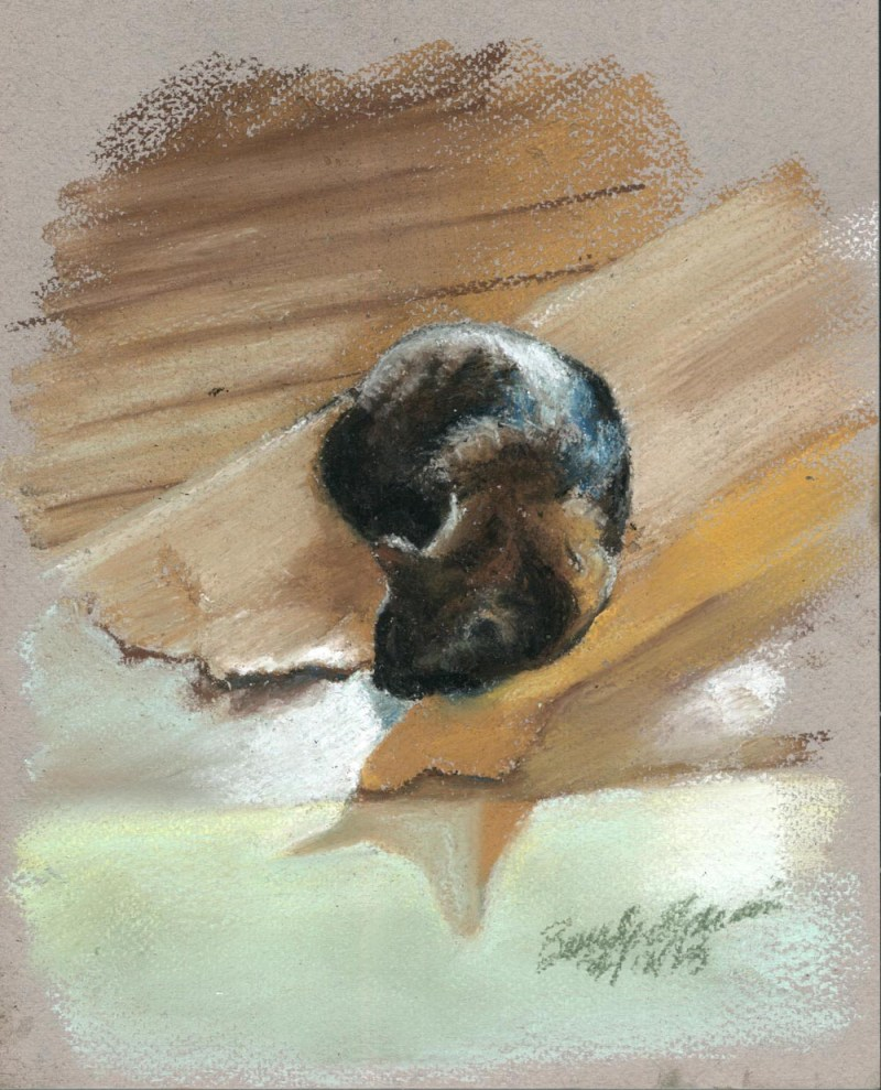 pastel sketch of cat