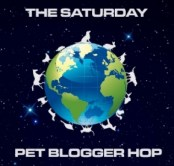 Saturday-pet-blogger-hop-badge