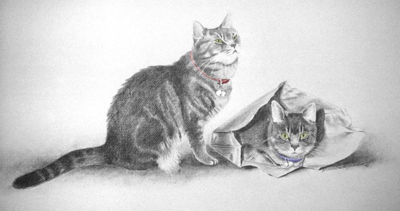 """Scarlett and Melanie"", pencil, 18"" x 30"", pencil and colored pencil © B.E. Kazmarski"
