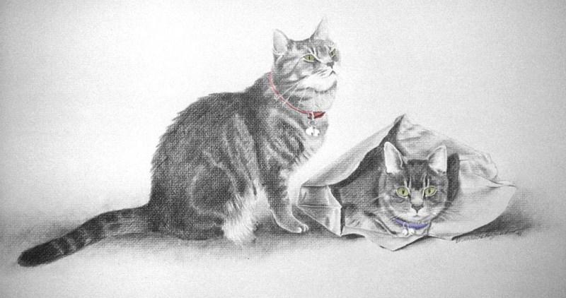 """Scarlett and Melanie"", pencil, 18"" x 30"", pencil and colored pencil © B.E. Kazmarski"