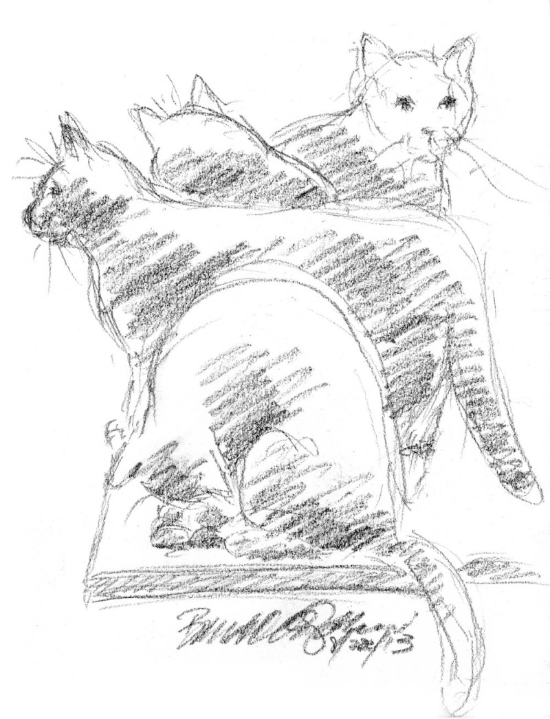 charcoal sketch of four cats